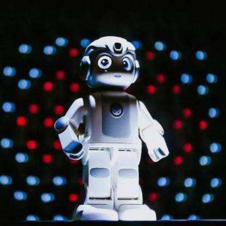 多功能机器人